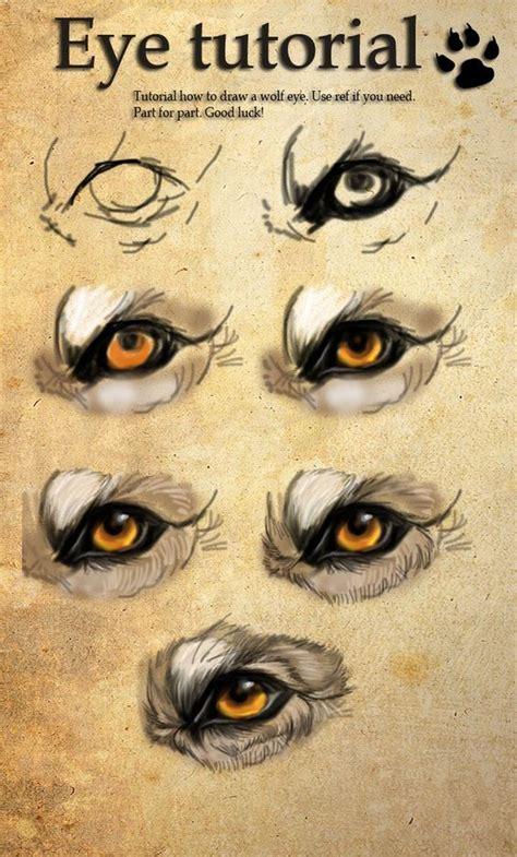 werewolf eyes tutorial wolf eyes eye tutorial and eyes on pinterest