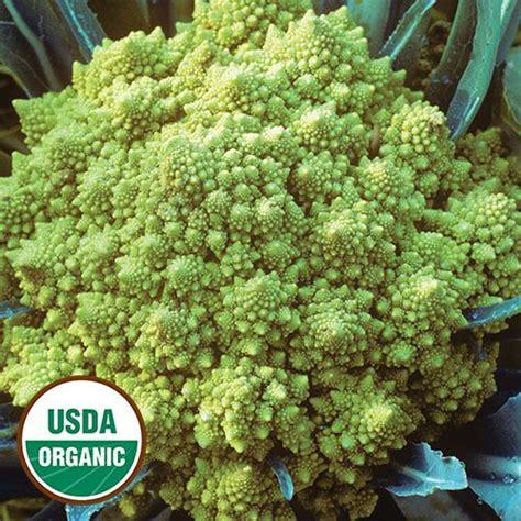 best vegetable seeds 17 best images about heirloom vegetable seeds on