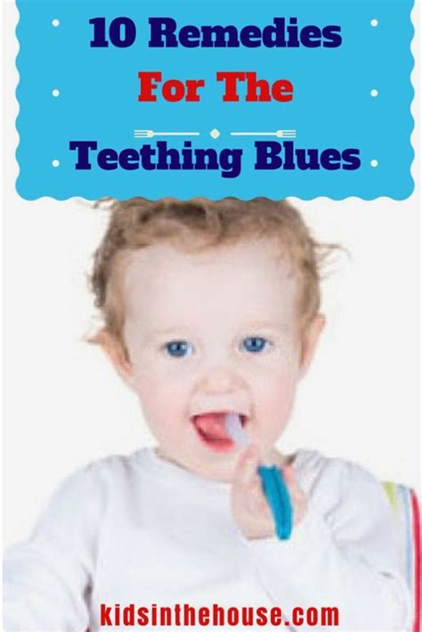 puppy teething symptoms 1000 ideas about teething symptoms on teething teething