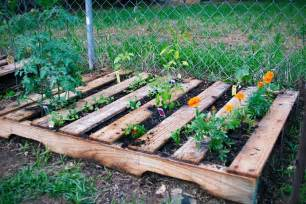 18 veggie pallet garden