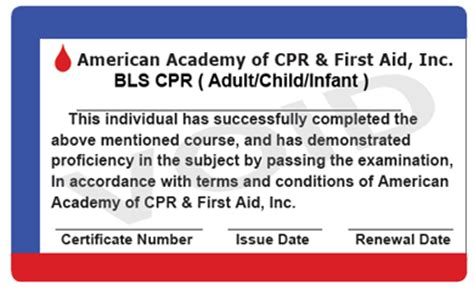 first aid cpr card template