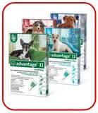 advantage plus for dogs beware of parasitic worms