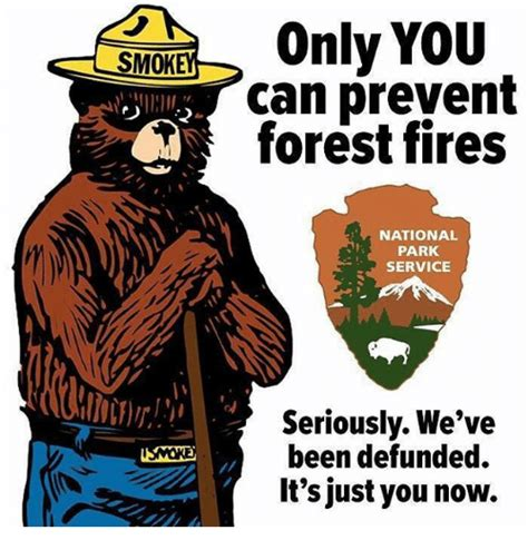 Only You Can Prevent Forest Fires Meme - 25 best memes about service service memes