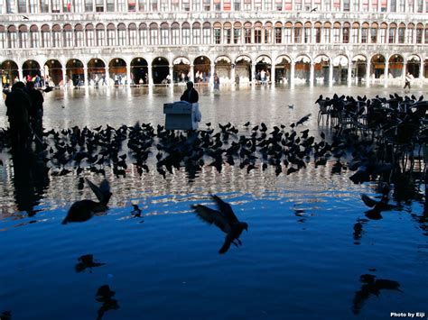 google images venice venice travel photo brodyaga com image gallery italy