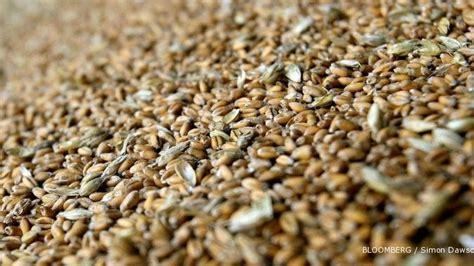 Jual Pollard Gandum Di Jakarta duh harga gandum melejit hingga 51