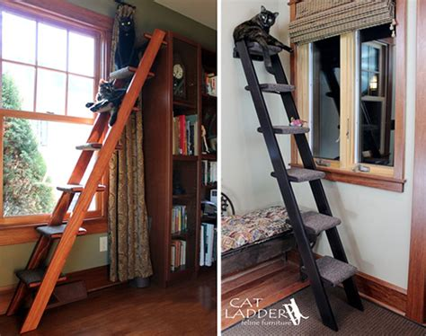 Ikea Hack Loft Bed by Give Kitty Her Own Ladder To Climb Hauspanther