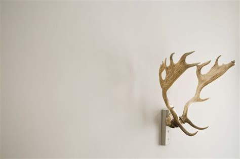 How To Make Paper Mache Antlers - how to make antler towel hooks