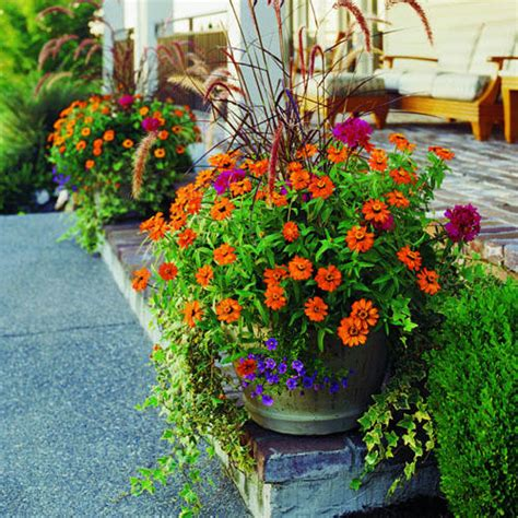 planters for container gardens how to plant a garden pot sunset