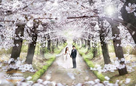 Best Wedding Photoshoot by Best Season To Visit Korea For Your Prewedding Photoshoot