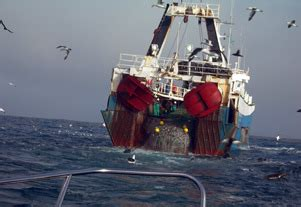 deep sea fishing boat hire durban fishing charters cabs car hire south africa