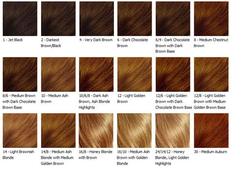 hair color chart loreal hair color chart age hair color hairstyle