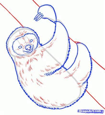 how to use yahoo doodle how to draw a sloth yahoo image search results vbs