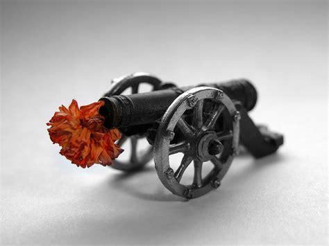 fiori nei cannoni mettete dei fiori nei vostri cannoni makia