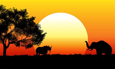 Safitri Syari safari background free vector 57526 free downloads