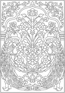 peacock coloring pages for adults coloring pages peacock printable designs