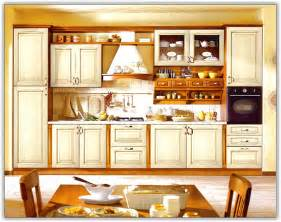 Kitchen Cabinets Inserts Pantry Doors With Glass Inserts Home Design Ideas