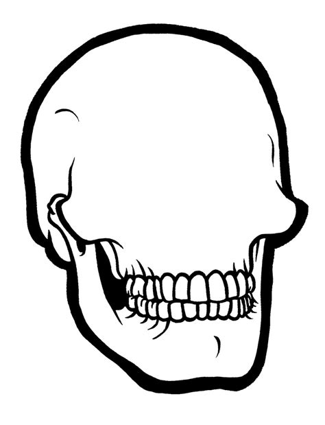 blank sugar skull template skull blank draw some shiiiiiiiiiit on it and leave it