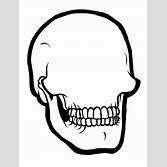2020 other images blank sugar skull template template sugar source pronofoot35fo Gallery