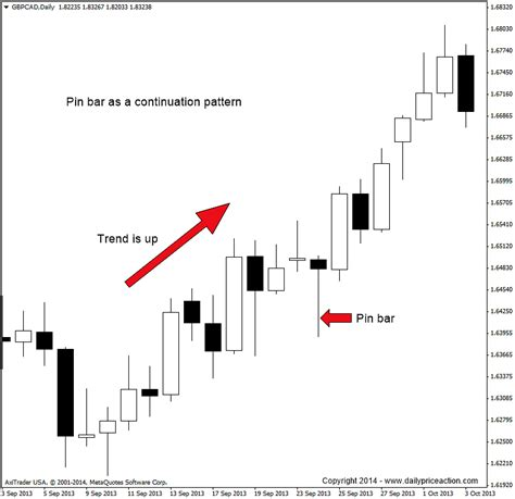 forex webinar price action candlestick patterns video the forex pin bar trading strategy revealed dpa