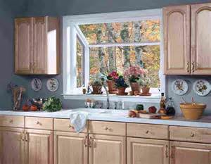 kitchen garden window ideas decor ideasdecor ideas