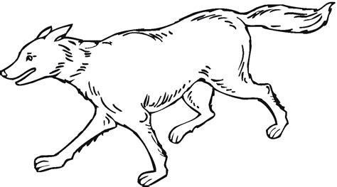 printable coloring pages wolves free printable wolf coloring pages for