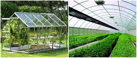 Greenhouse Lighting Fixtures Why Use T5 Grow Lights In Your Greenhouse T5 Grow Light Fixtures