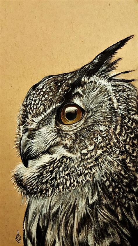 owl drawing by gilca rivera