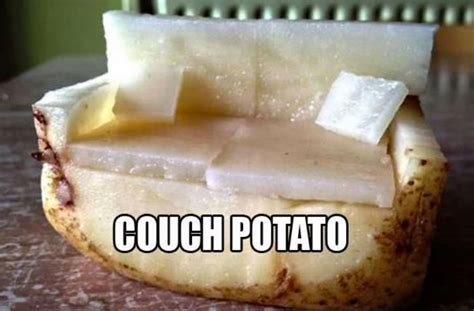 funny couch potato quotes funny couch potato quotes 28 images quotes about