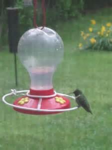 how to make perches for a hummingbird feeder 10 steps