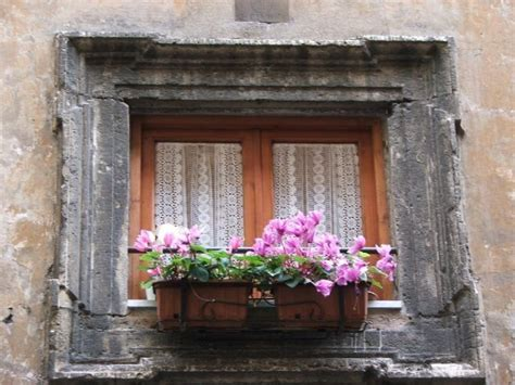 beautiful windows 45 best images about beautiful windows looking out