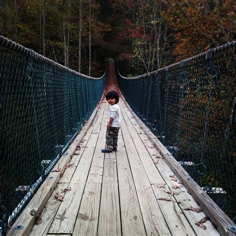 foxfire mountain swinging bridge unbiased review of foxfire mountain adventure park