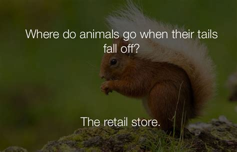 where the animals go 61 funny jokes that are so stupid they re hilarious my favorite is 15