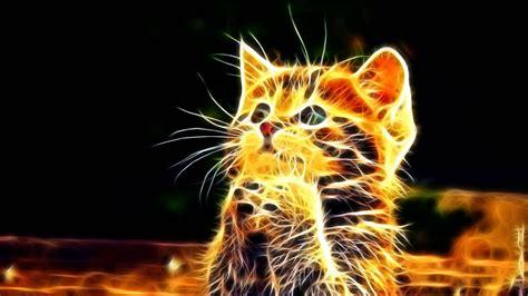 Imagenes Extraordinarias En 3d | fondo 3d de gatos 1920x1080 fondos de pantalla y