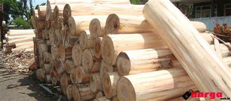 Biji Sengon Per Kilo update harga kayu albasia sengon di pasaran saat ini