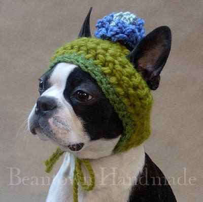 knitted hats for dogs crochet puppy hats for only new crochet patterns