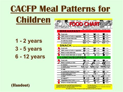 meal pattern for 1 year old cacfp meal requirements ppt video online download