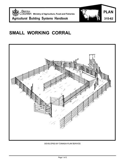 layout of head work corral for 200 head of cows google search horse stuff
