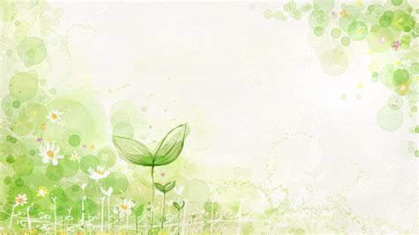 plant wallpaper green plants wallpaper 822728