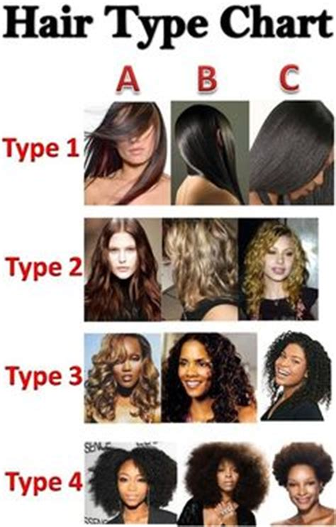 type 1 hair 1000 images about hair quality and types on pinterest