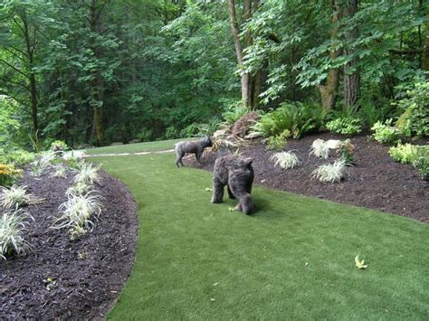 wooded backyard ideas landscaping ideas for wooded backyard home office ideas