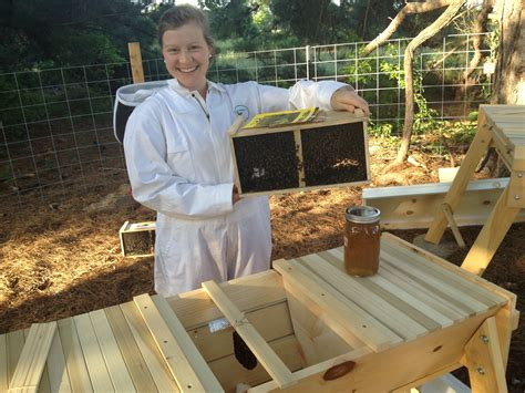 top bar beekeeping it s official we re beekeepers