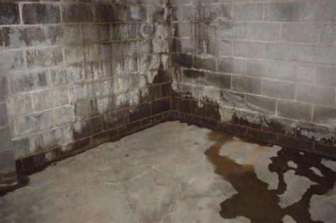 a simple guide to professional basement waterproofing in
