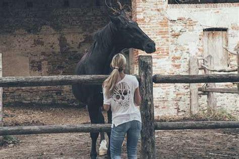 animalismo mujer folia con caballo 52 im 225 genes de caballo gratis en freejpg