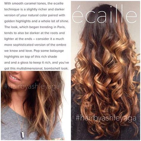 ecaille hair color best 25 ecaille hair ideas on ecaille hair