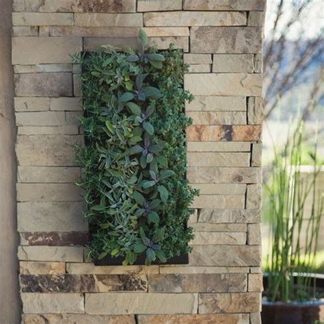grovert living wall planter with mounting bracket living