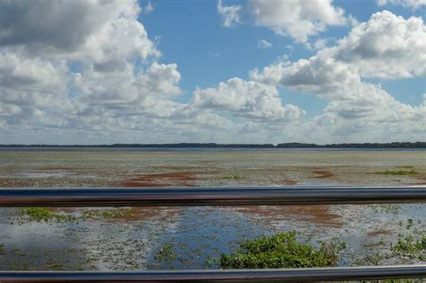 boat rides in florida airboat ride at wild florida nature park kissimmee