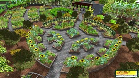 permaculture vegetable garden the gallery for gt permaculture vegetable garden layout
