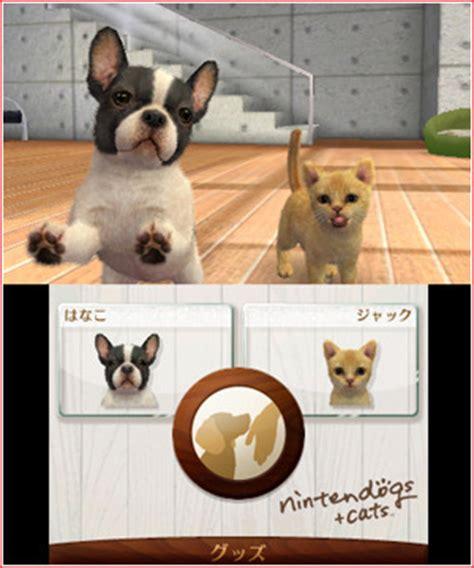 nintendogs plus cats golden retriever test du jeu nintendogs cats golden retriever ses nouveaux amis sur 3ds jeuxvideo