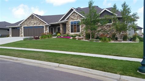 landscaping irrigation lawn care yellow jacket