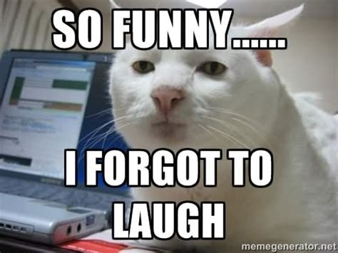 Meme Laughing - laughing meme images reverse search